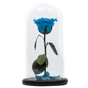 Blue Heart Shape Preserved Rose | Beauty and The Beast Glass Dome
