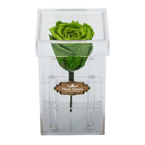 GREEN PRESERVED ROSE | PETITE ACRYLIC ROSE BOX