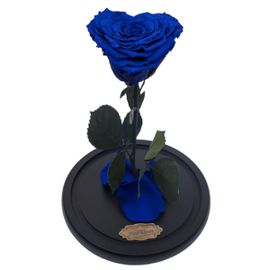 Royal Blue with Crystal Dust Heart Shape Preserved Rose | Beauty and The Beast Glass Dome