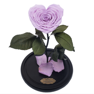 Purple with Crystal Dust Heart Shape Preserved Rose | Beauty and The Beast Glass Dome