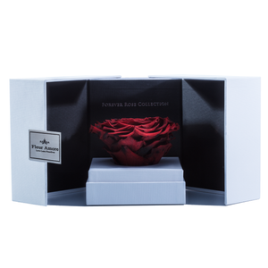 Fire Red Mega Preserved Rose | Swing Opening Box