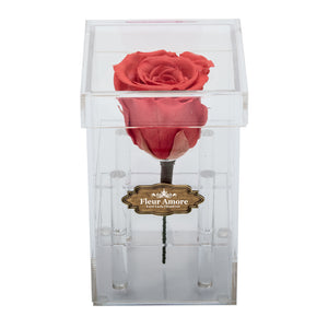 FIRE RED PRESERVED ROSE | PETITE ACRYLIC ROSE BOX