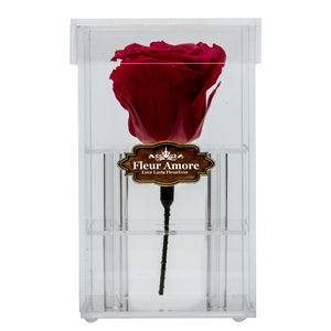 BRIGHT RED PRESERVED ROSE | PETITE ACRYLIC ROSE BOX