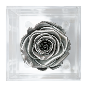 SILVER PRESERVED ROSE | PETITE ACRYLIC ROSE BOX