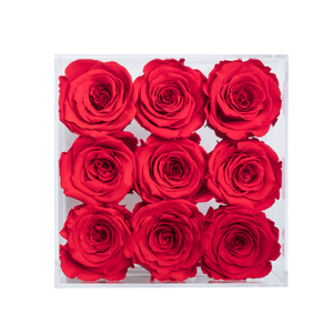 RED COLOR PRESERVED ROSES | SMALL ACRYLIC ROSE BOX