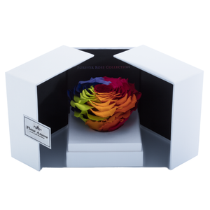 Rainbow Mega Preserved Rose | Swing Opening Box