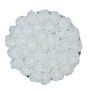 White Preserved Roses | Medium Round Black Huggy Rose Box