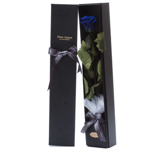 The Only | 1 Royal Blue Preserved Long Stem Rose Bouquet