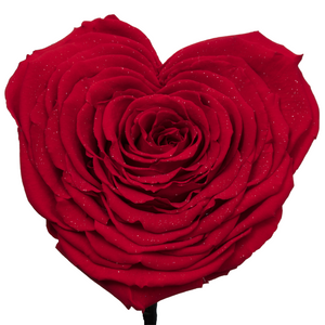Red with Crystal Dust Heart Shape Preserved Rose | Beauty and The Beast Glass Dome