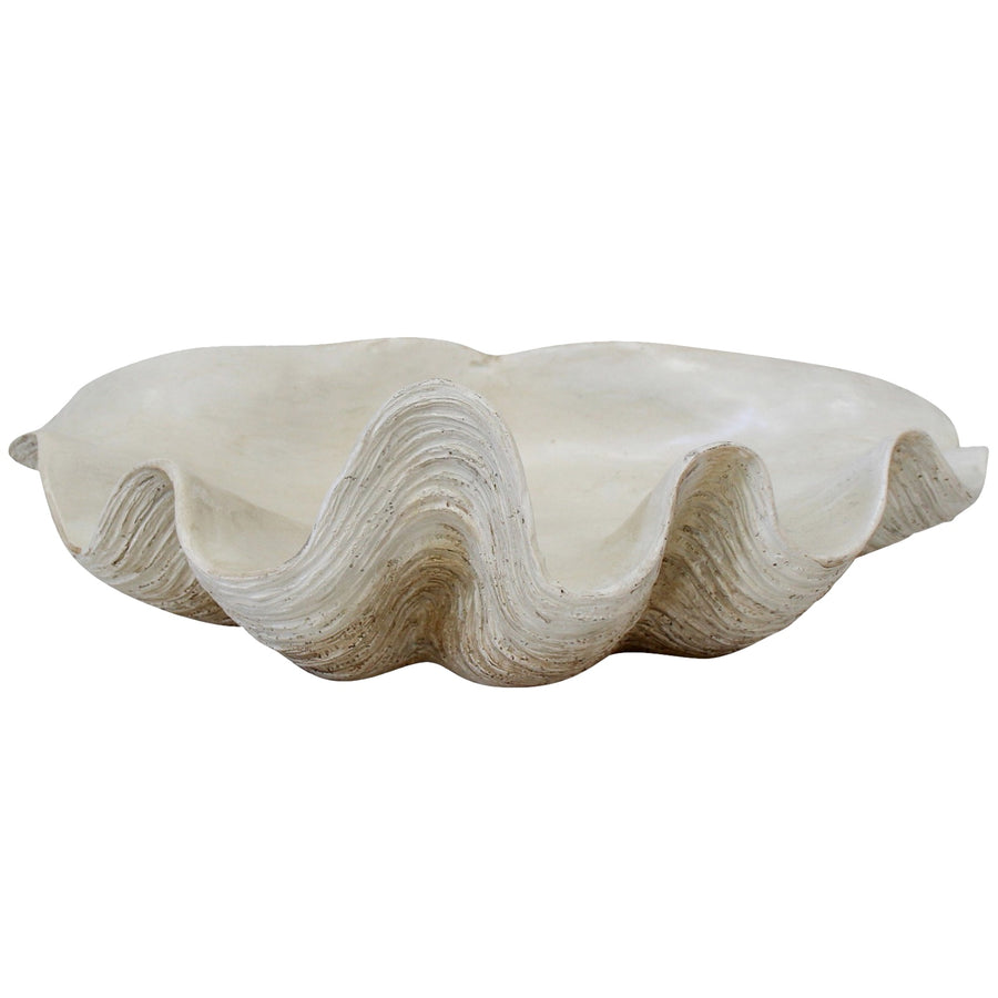 White Decorative Clam Shell 29.5cm