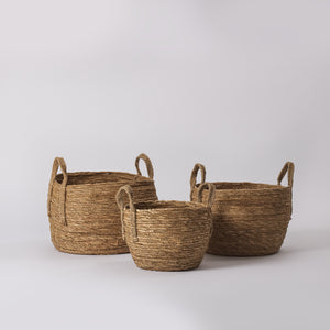 Natural Seagrass Plant Basket, Set of 3