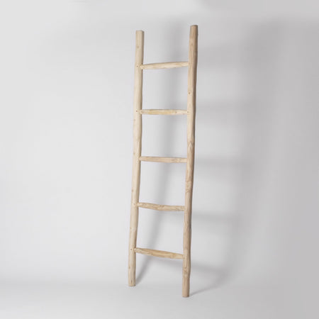 Decorative ladder rack