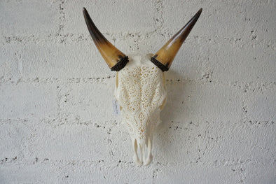 Real Cow Skull Carving 003