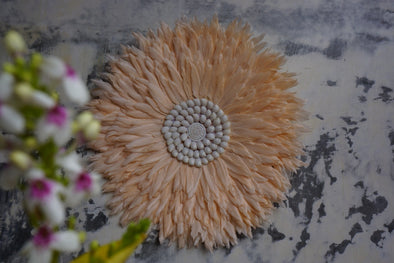 Wall Decor Feather And Shell 032