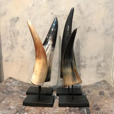 Cow Horn On Stand
