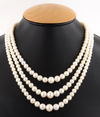 5 - 8 mm 3 Row Pearls (Moti) Necklace with Gemstone Clasp With Ruby - ZeeDiamonds