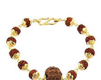 Six Faced Rudraksha Chain Bracelet with Gold Plated Capping - ZeeDiamonds