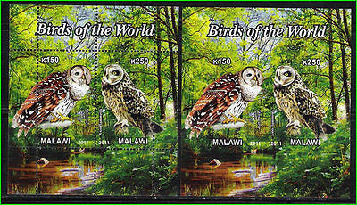 MALAWI - 2011 BIRDS / OWLS - SET of 2-Min.Sheets-PERF AND IMPERF - MNH