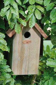Bird Nesting Box with Copper Roof Blue Tit