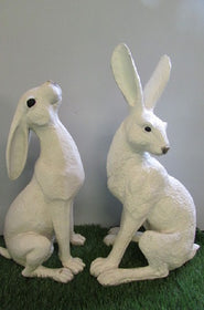 Hare March White