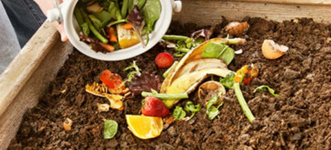 Composting an Eco-friendly way to grow fruits and vegetables