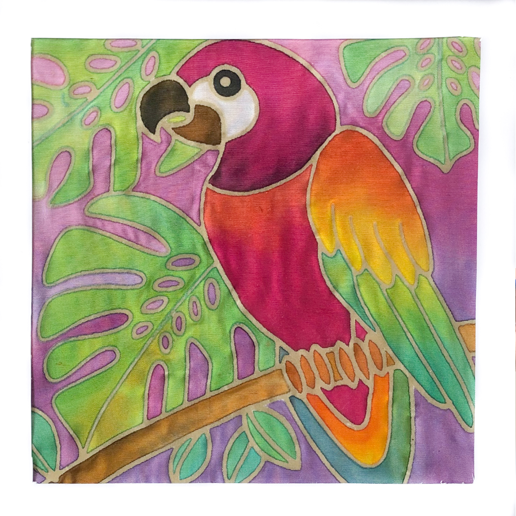 DIY Macaw Painting Kit - Creative Gift Under $20