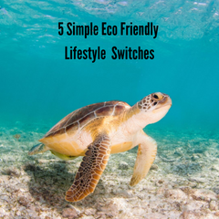 Eco Friendly Beauty & Lifestyle Swaps