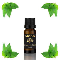 Spearmint Essential Oil 10ml - MoodEssentialOils.co.uk
