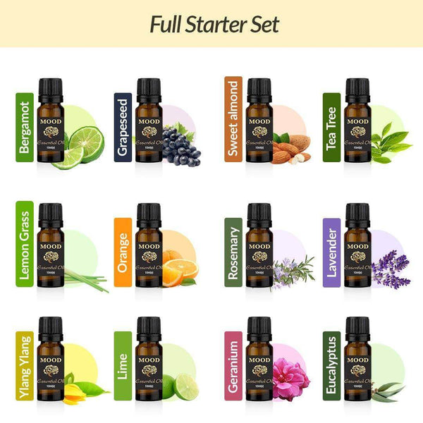 Full Oil Starter Set Bergamot Eucalyptus Geranium Lime Lavender Lemongrass Orange Rosemary Tea Tree Ylang Ylang Sweet Almond Grapeseed - MoodEssentialOils.co.uk