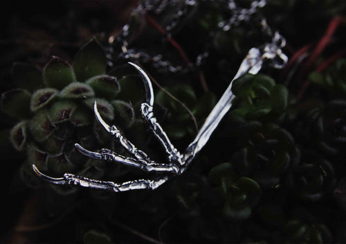 silver blackbird claw on a dark plant background