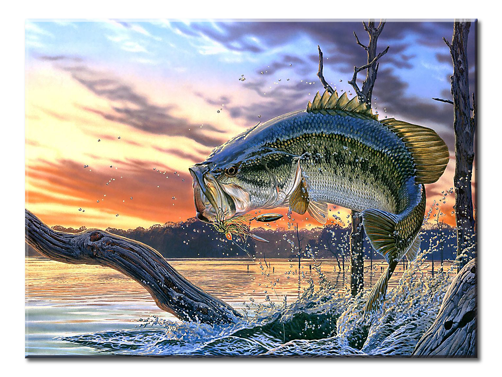 Large Mouth Bass Fishing- 1 panel