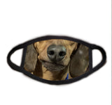 Dog Face Dachshund Real Face Mask