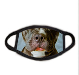Dog Face Pitbull Real Face Mask