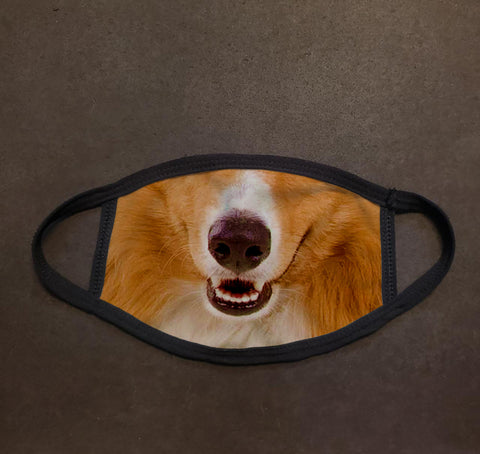 Dog Face Collie Real Face Mask