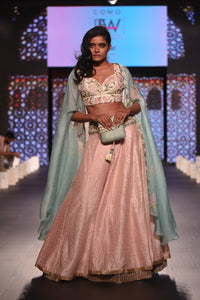 Blush Pink Lehenga with 3d Floral Blouse