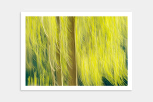 spring tree art prints