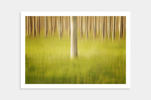 modern trees artwork prints