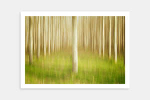 modern tree fine art prints