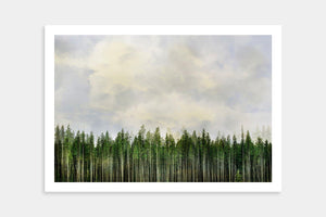 unique trees art prints