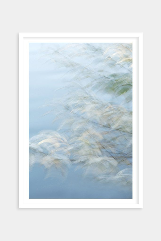 impressionistic nature art prints