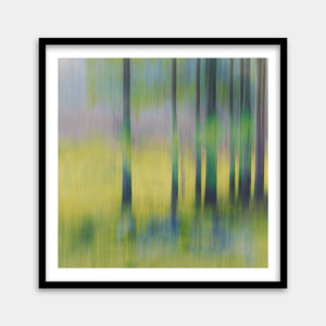 enchanted forest framed art