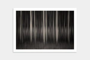 dark forest art prints