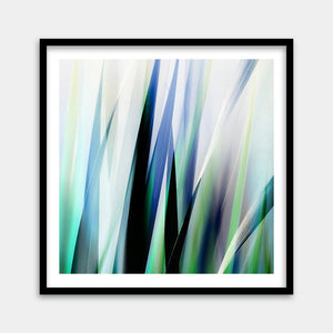 buy nature fine art