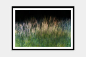 fine art grass framed