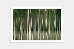 affordable trees artwork buy