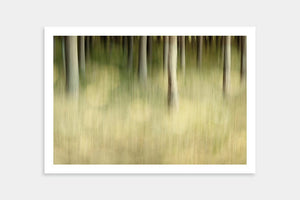 sepia forest art prints
