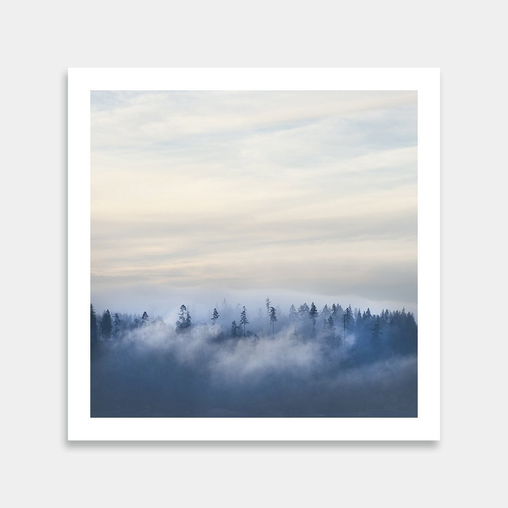 Foggy Trees Landscape ARt