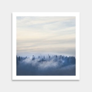 trees foggy art for sale