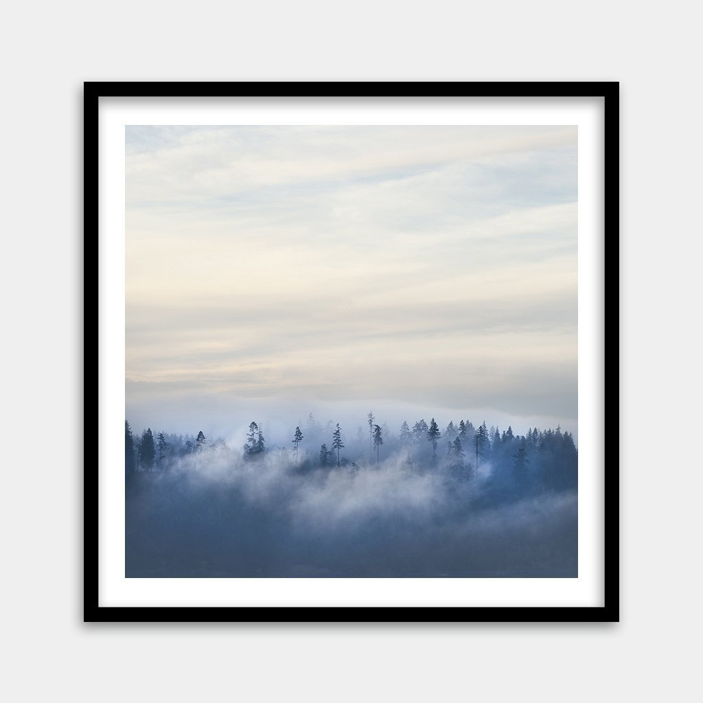 Framed foggy tree art prints