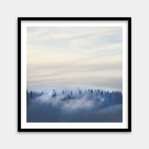 foggy forest framed artwork